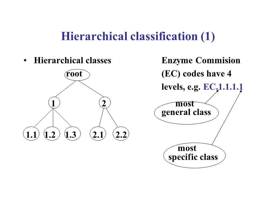 Hierarchical classification (2) Challenges –Several predictions must be made for each example – one predicted class at each level of the hierarchy –As we go down the hierarchy, there are fewer examples (records) per class – data fragmentation Opportunities –Information of class similarities in the hierarchy –Top-Down approach: first predict top-level class, then predict second-level class among children of predicted top-level class, etc., until a leaf class is predicted –Cost of misclassifying 1.1 into 1.2 is smaller than cost of misclassifying 1.1 into 2.1