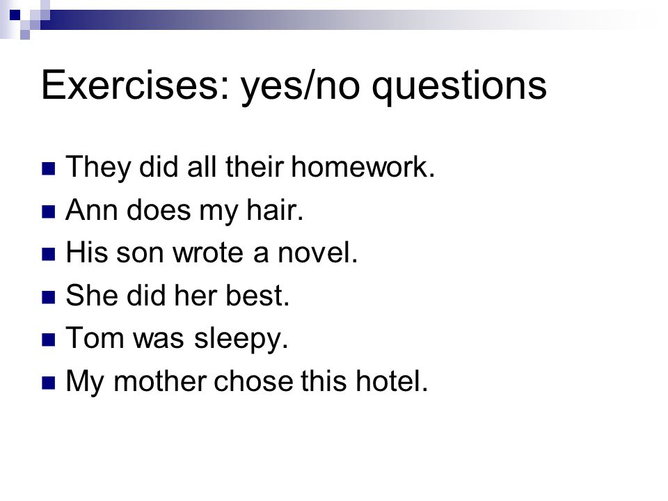 Exercises: yes/no questions They did all their homework.