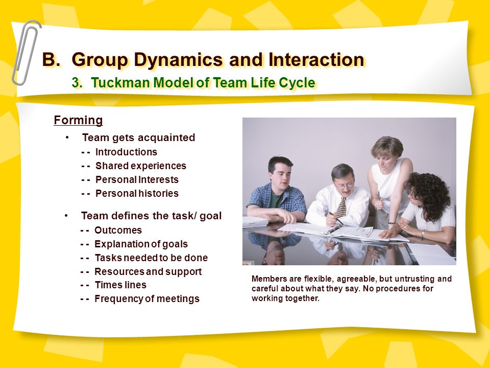 B. Group Dynamics and Interaction 3. Tuckman Model of Team Life Cycle Team gets acquainted - - Introductions - - Shared experiences - - Personal Inter