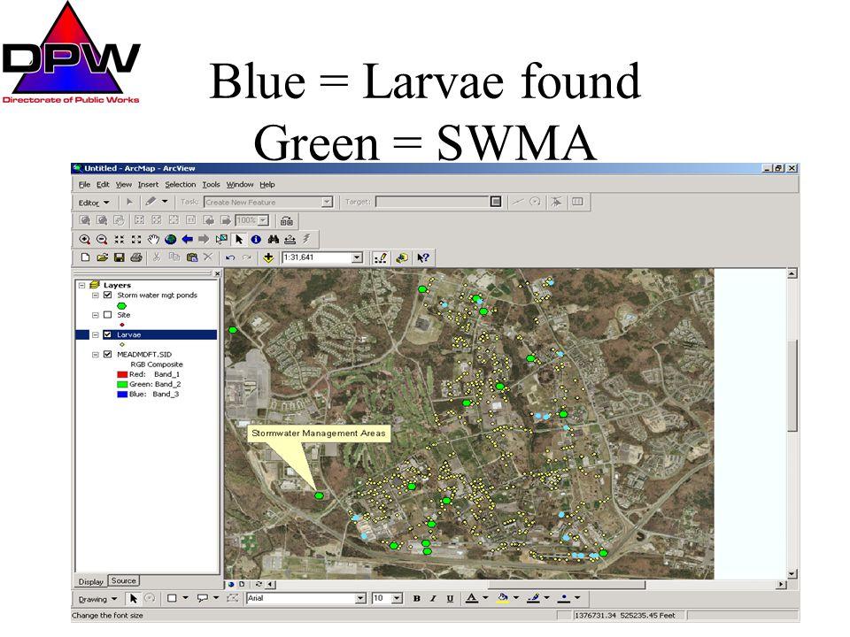 Blue = Larvae found Green = SWMA