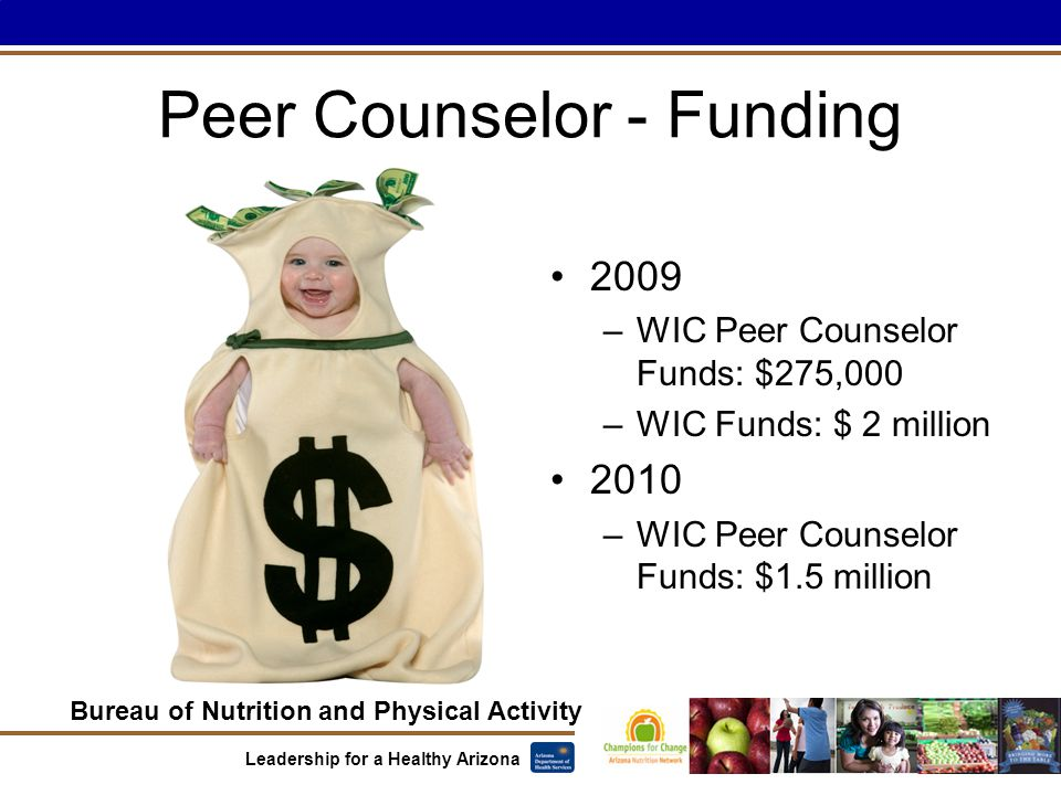 Bureau of Nutrition and Physical Activity Leadership for a Healthy Arizona Peer Counselor - Funding 2009 –WIC Peer Counselor Funds: $275,000 –WIC Funds: $ 2 million 2010 –WIC Peer Counselor Funds: $1.5 million