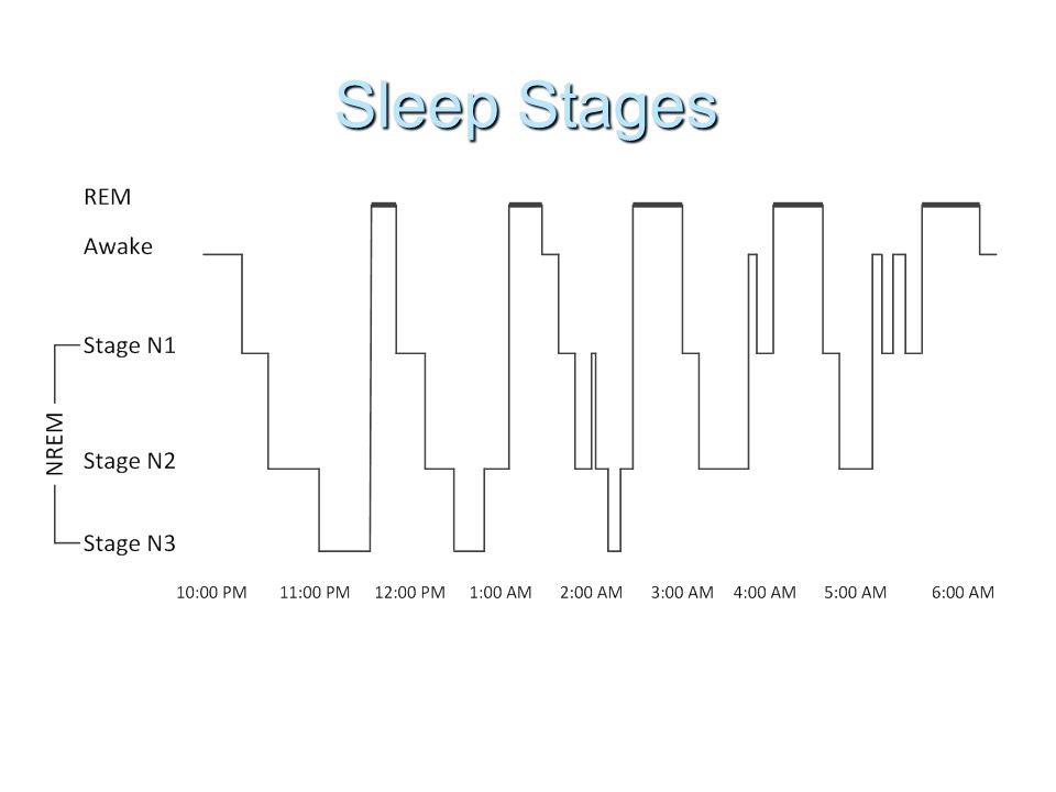 Assessing Sleep Problems  Polysomnographic (PSG) evaluation - includes assessment of airflow, leg movements, brain wave activity, eye movements, muscle movements, and heart activity  Multiple Sleep Latency Test (MSLT) - naps at 2 hour intervals
