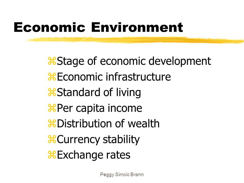 Peggy Simcic Brønn Economic Environment zStage of economic development zEconomic infrastructure zStandard of living zPer capita income zDistribution o