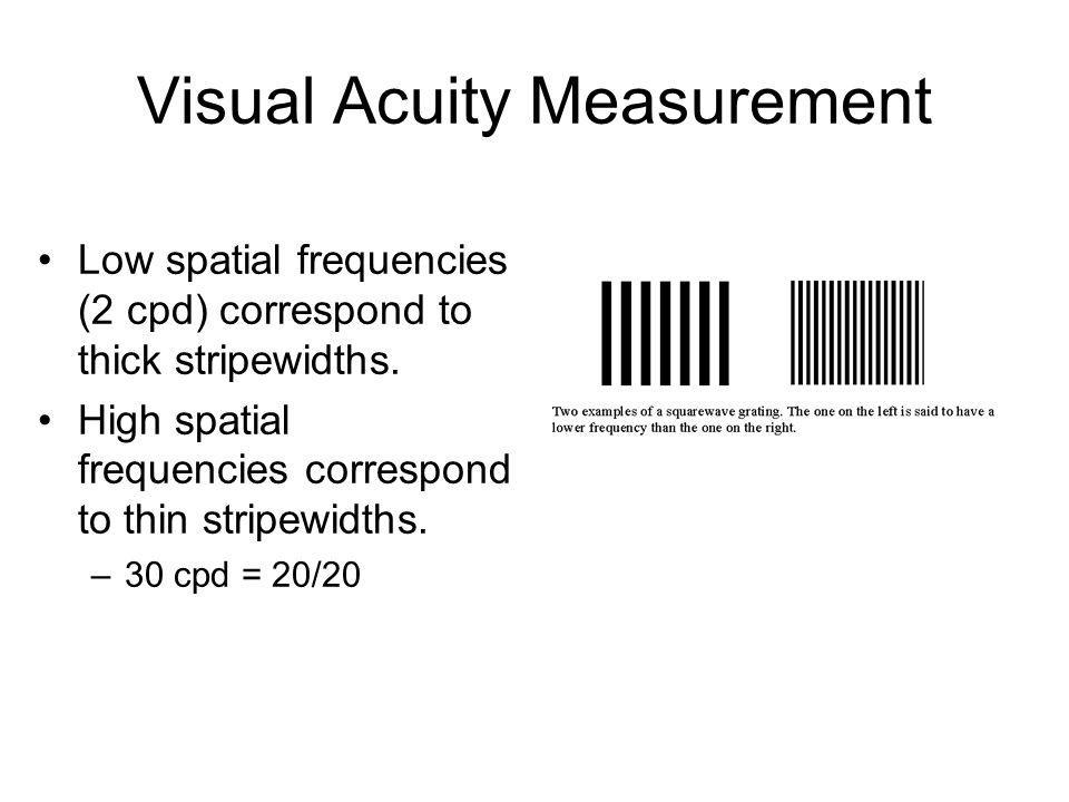 Visual Acuity Measurement Low spatial frequencies (2 cpd) correspond to thick stripewidths.