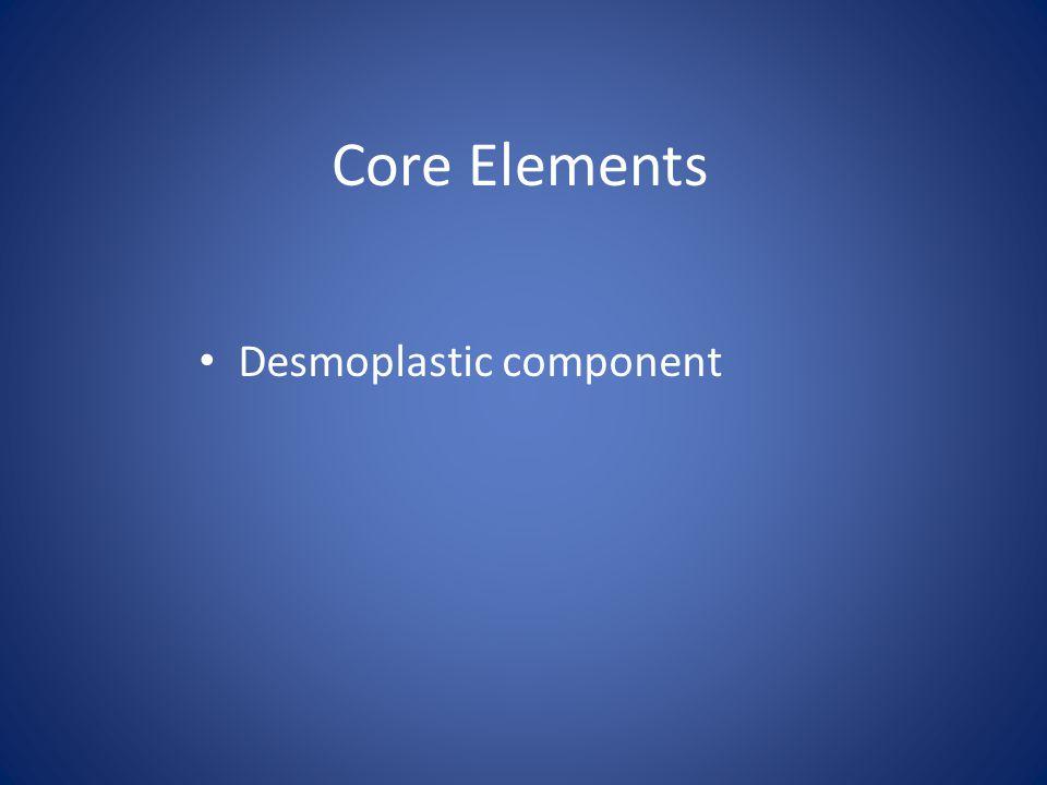 Core Elements Desmoplastic component