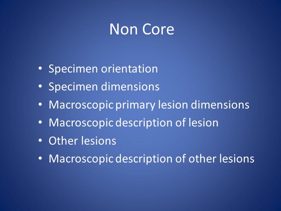 Non Core Specimen orientation Specimen dimensions Macroscopic primary lesion dimensions Macroscopic description of lesion Other lesions Macroscopic description of other lesions