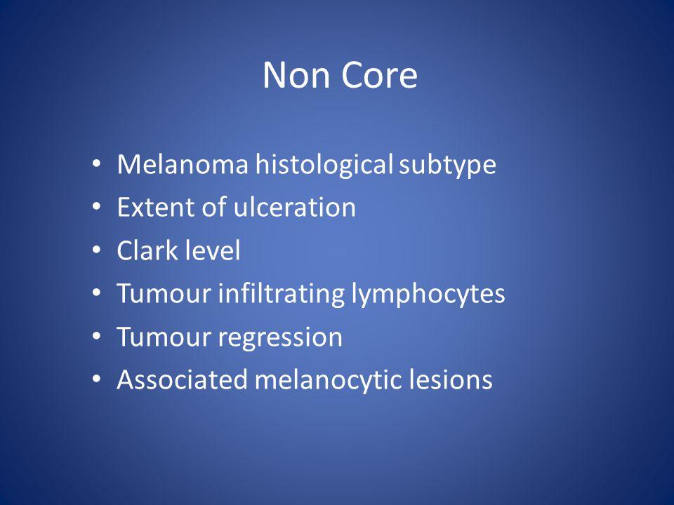 Non Core Melanoma histological subtype Extent of ulceration Clark level Tumour infiltrating lymphocytes Tumour regression Associated melanocytic lesions