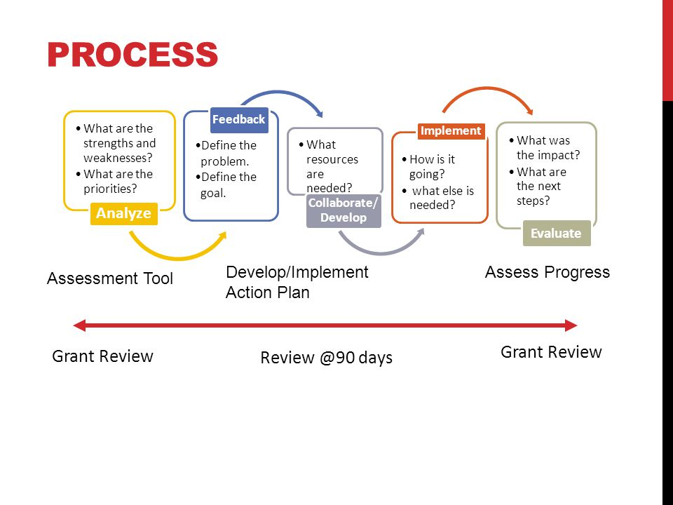 Grant Review PROCESS What are the strengths and weaknesses.