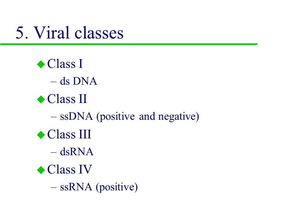 4. Replication of RNA viruses: Fig 13.17