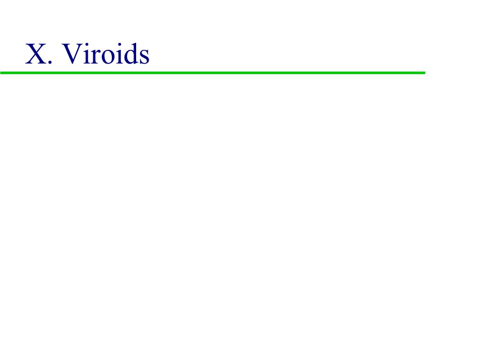 IX. Oncogenic Viruses