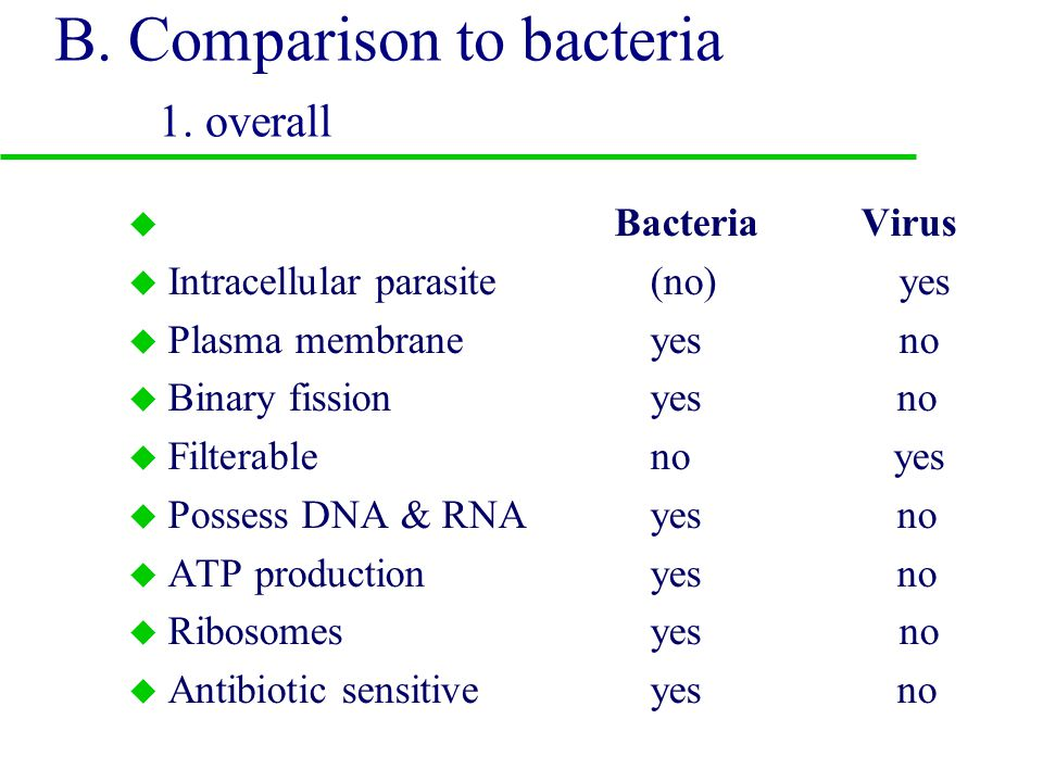 III. What is a virus u A. Characteristics