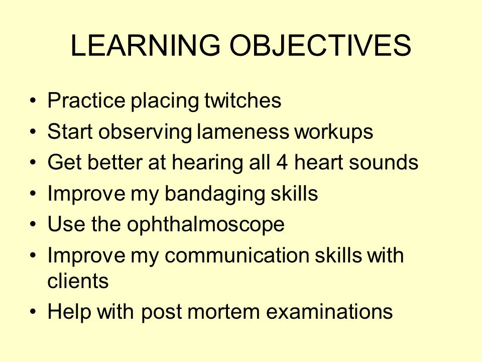 LEARNING OBJECTIVES Practice placing twitches Start observing lameness workups Get better at hearing all 4 heart sounds Improve my bandaging skills Use the ophthalmoscope Improve my communication skills with clients Help with post mortem examinations