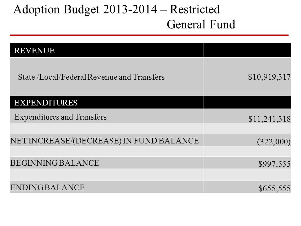 Adoption Budget 2013-2014 – Restricted General Fund REVENUE State /Local/Federal Revenue and Transfers$10,919,317 EXPENDITURES Expenditures and Transf