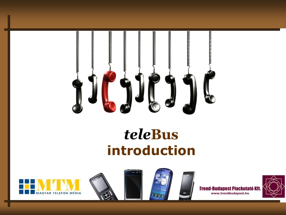 2 What is teleBus.