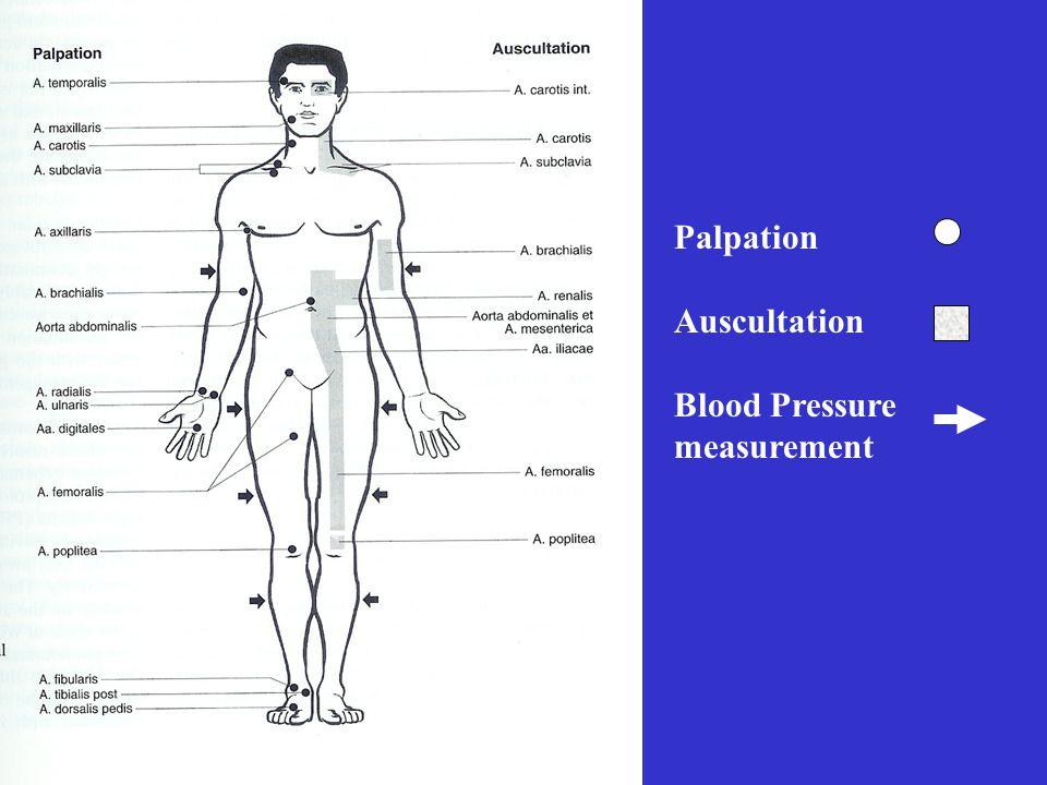 Palpation Auscultation Blood Pressure measurement