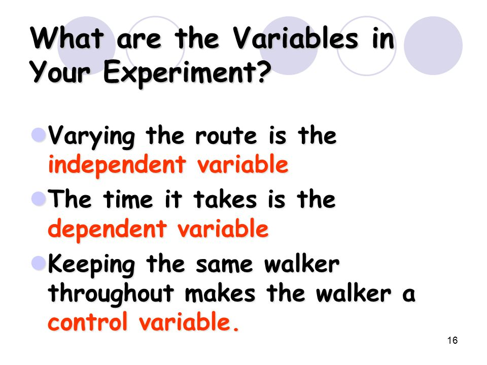 16 What are the Variables in Your Experiment.