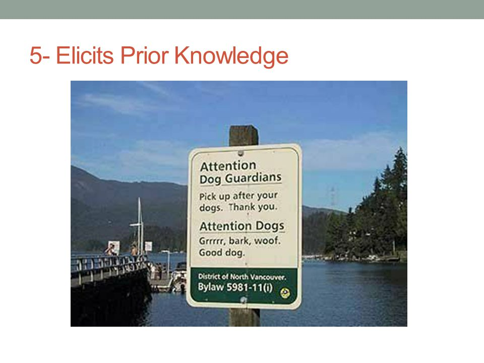 5- Elicits Prior Knowledge