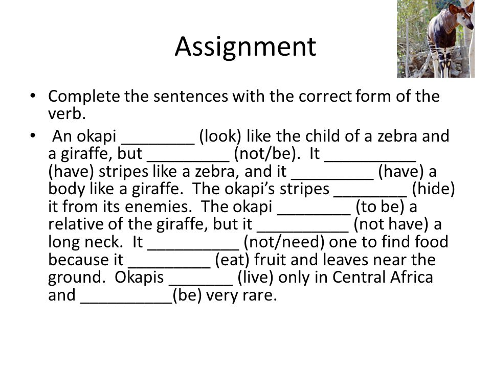 Assignment Complete the sentences with the correct form of the verb.