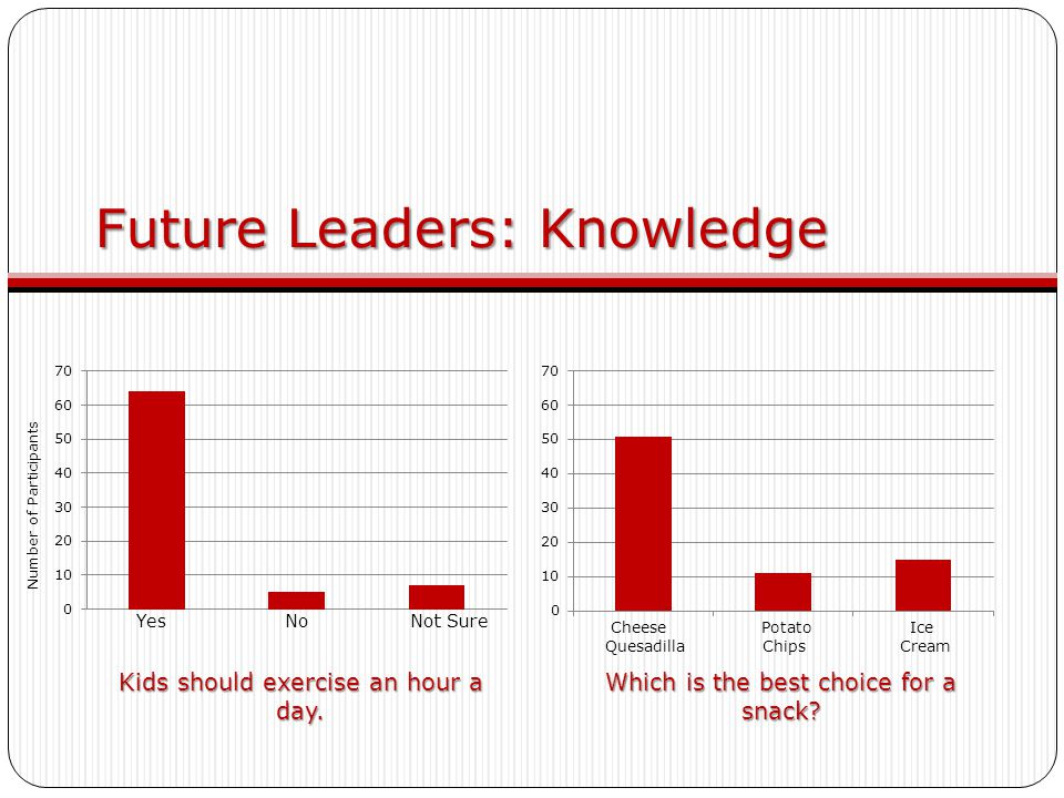 Future Leaders: Knowledge Which is the best choice for a snack.