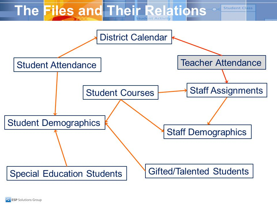 The Files and Their Relations Student Demographics District Calendar Student Attendance Special Education Students Gifted/Talented Students Staff Demographics Staff Assignments Student Courses Teacher Attendance