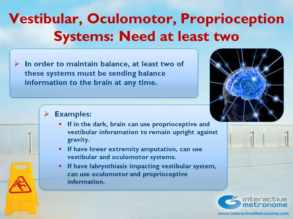 Vestibular, Oculomotor, Proprioception Systems: Need at least two  In order to maintain balance, at least two of these systems must be sending balance information to the brain at any time.