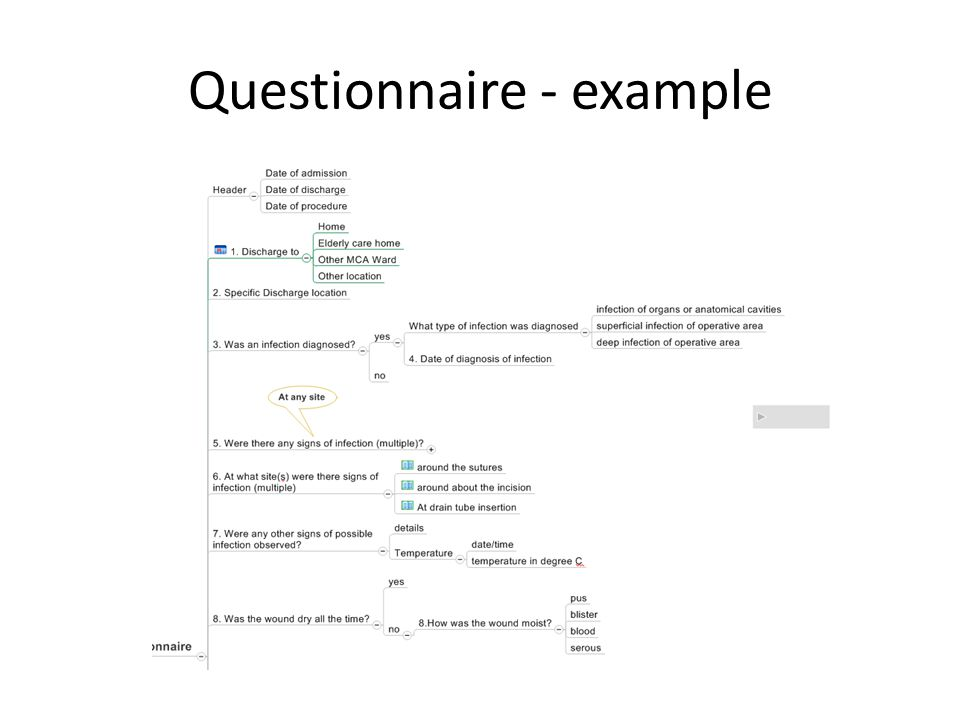 Questionnaire - example