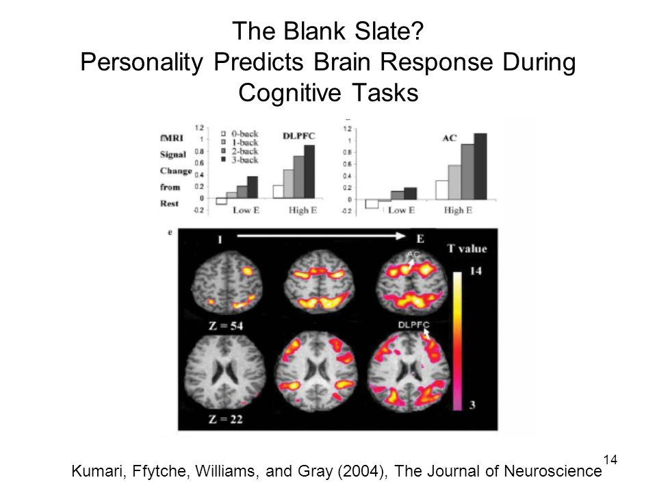 14 The Blank Slate? Personality Predicts Brain Response During Cognitive Tasks Kumari, Ffytche, Williams, and Gray (2004), The Journal of Neuroscience