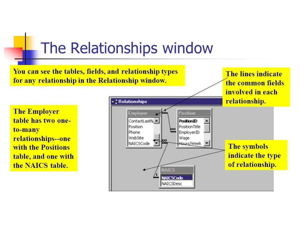 The Relationships window You can see the tables, fields, and relationship types for any relationship in the Relationship window. The lines indicate th