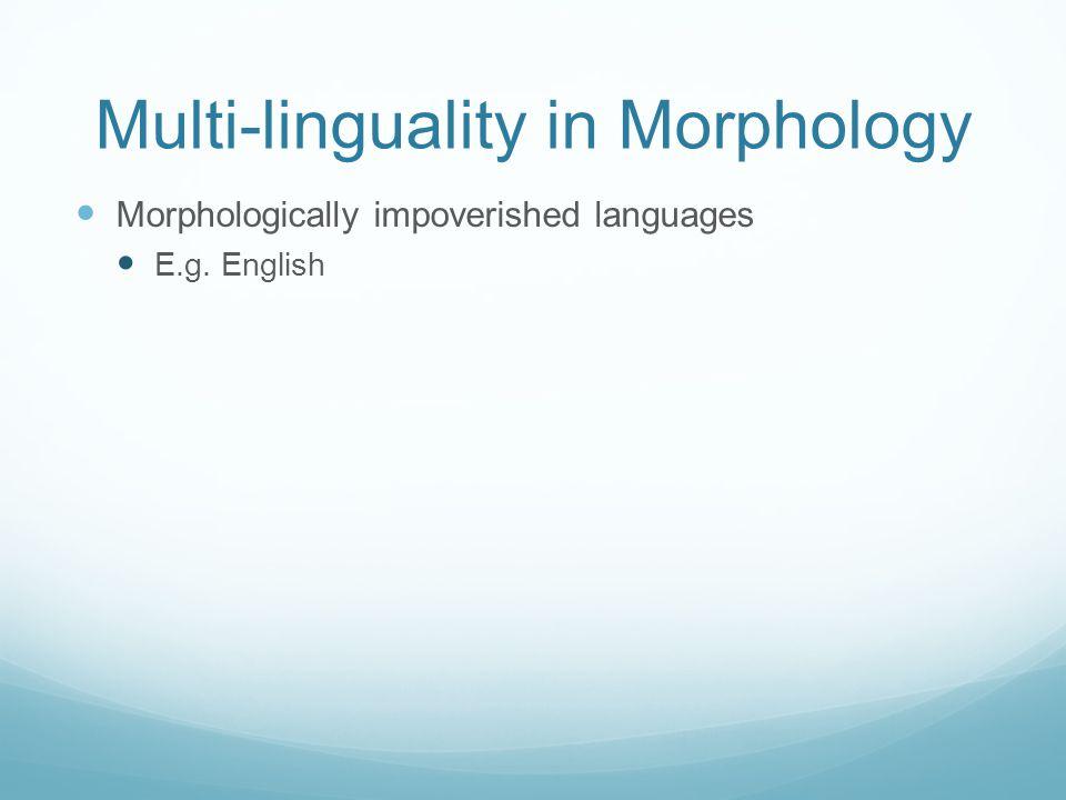 Multi-linguality in Morphology Morphologically impoverished languages E.g. English