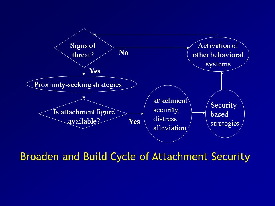 Attachment Security and barriers to compassion in couple relationships Overall, increased security can overcome barriers to responsiveness to a partner's goal exploration even when a person is tired or depleted.