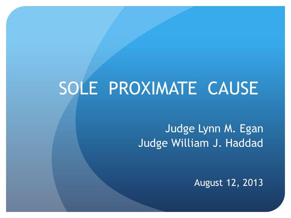 SOLE PROXIMATE CAUSE Judge Lynn M. Egan Judge William J. Haddad August 12, 2013
