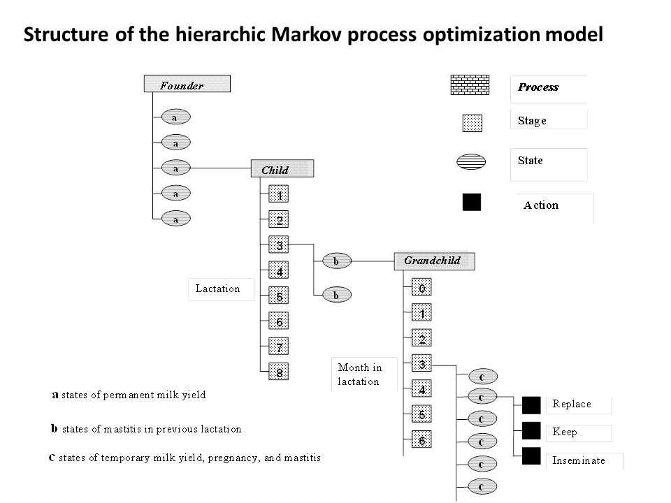 Structure of the hierarchic Markov process optimization model
