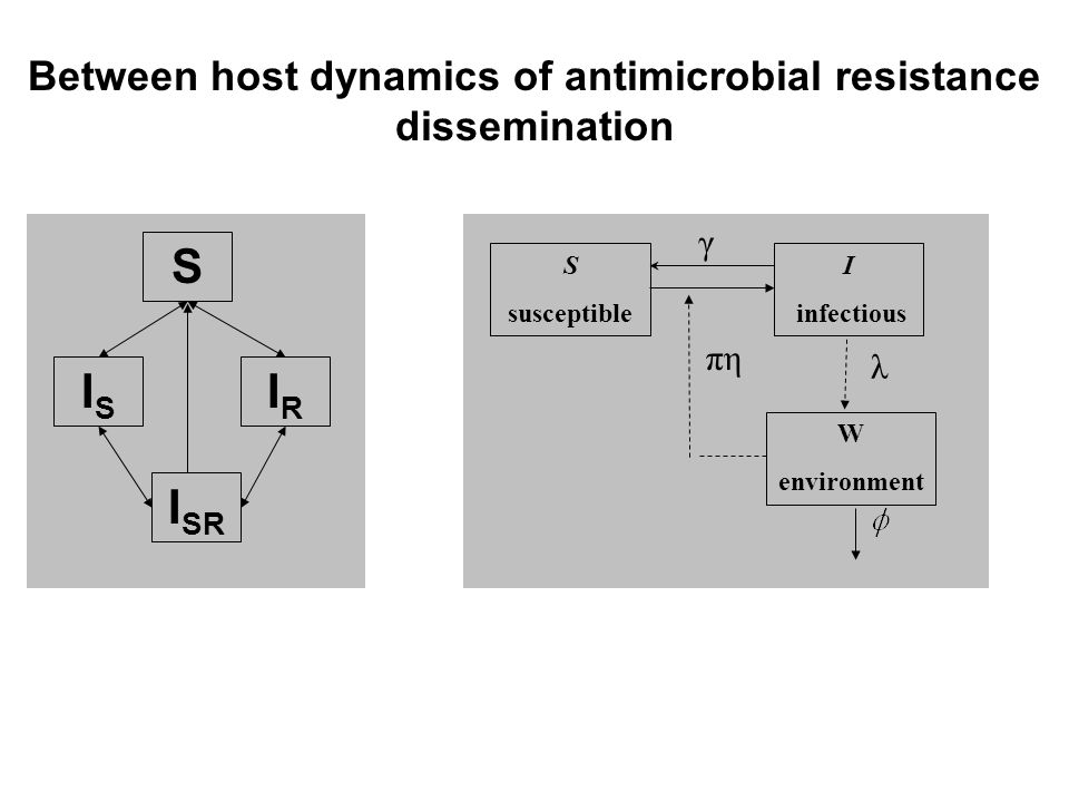 Between host dynamics of antimicrobial resistance dissemination S ISIS IRIR I SR S susceptible I infectious W environment γ πη λ
