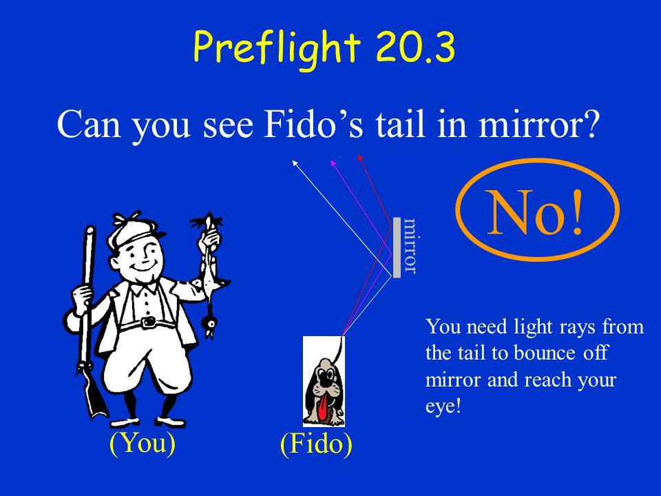 Preflight 20.3 Can you see Fido's tail in mirror.mirror No.