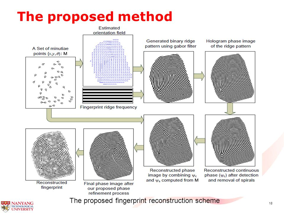 18 The proposed method The proposed fingerprint reconstruction scheme
