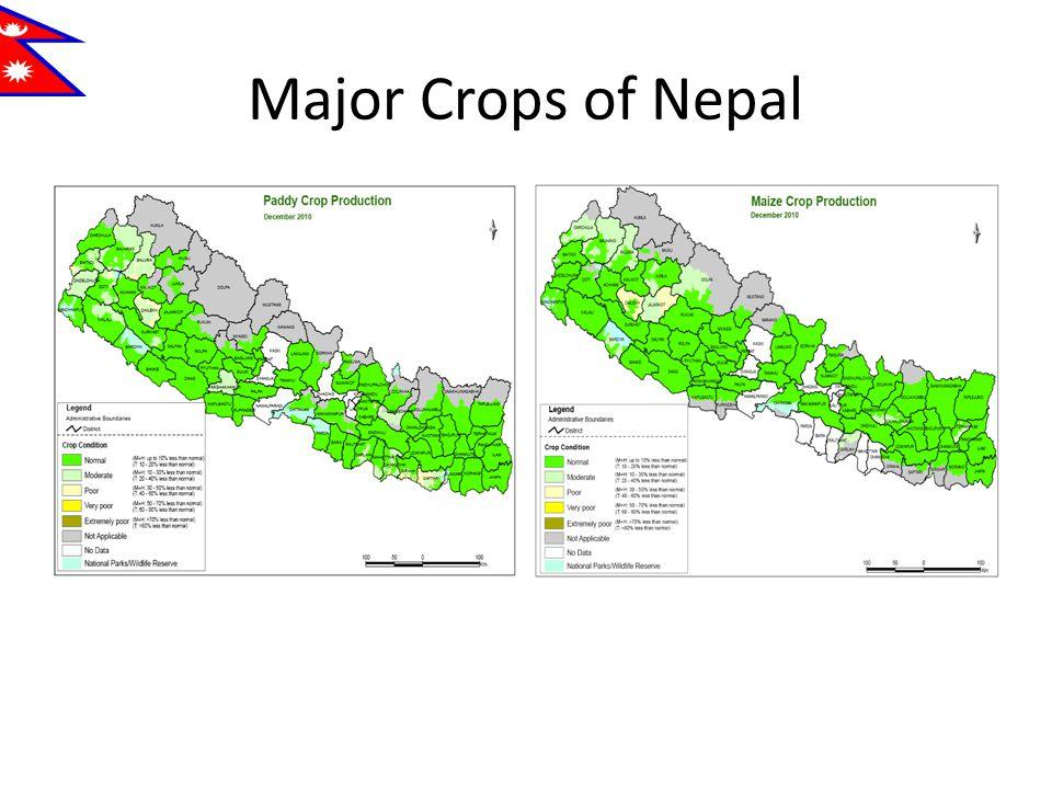 Major Crops of Nepal