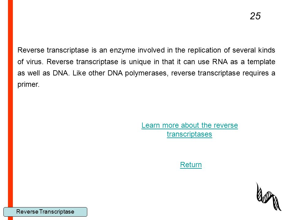 Reverse Transcriptase 25 Reverse transcriptase is an enzyme involved in the replication of several kinds of virus. Reverse transcriptase is unique in