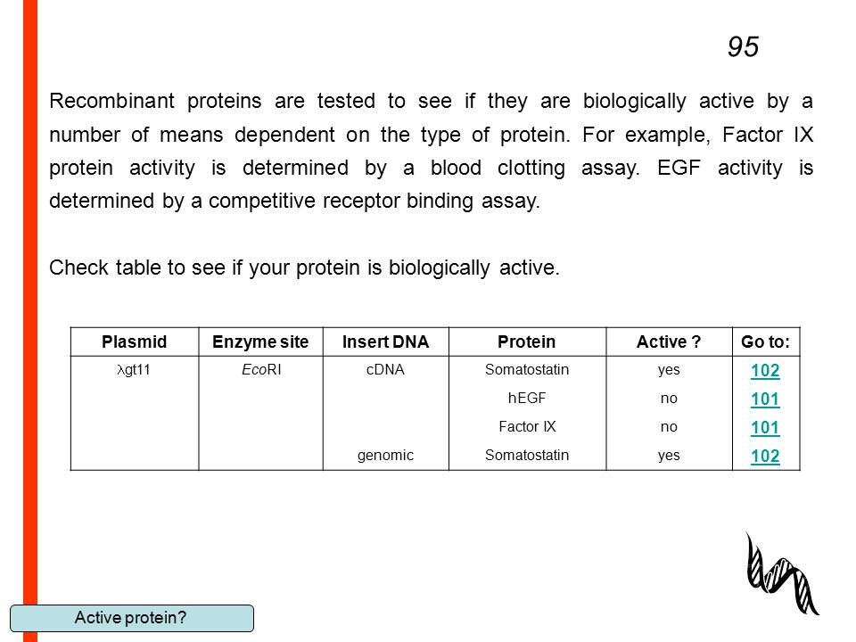 Active protein? 95 Recombinant proteins are tested to see if they are biologically active by a number of means dependent on the type of protein. For e