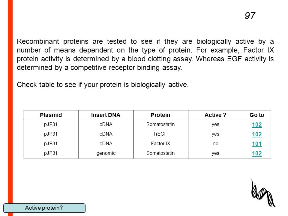 Active protein? 97 Recombinant proteins are tested to see if they are biologically active by a number of means dependent on the type of protein. For e