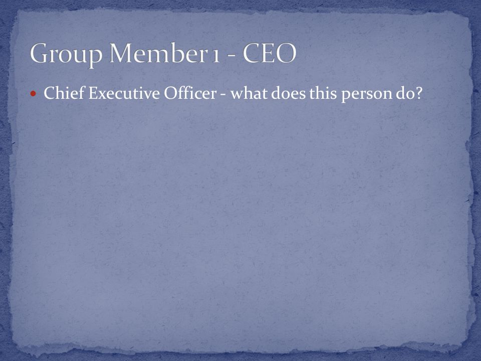Chief Executive Officer - what does this person do?