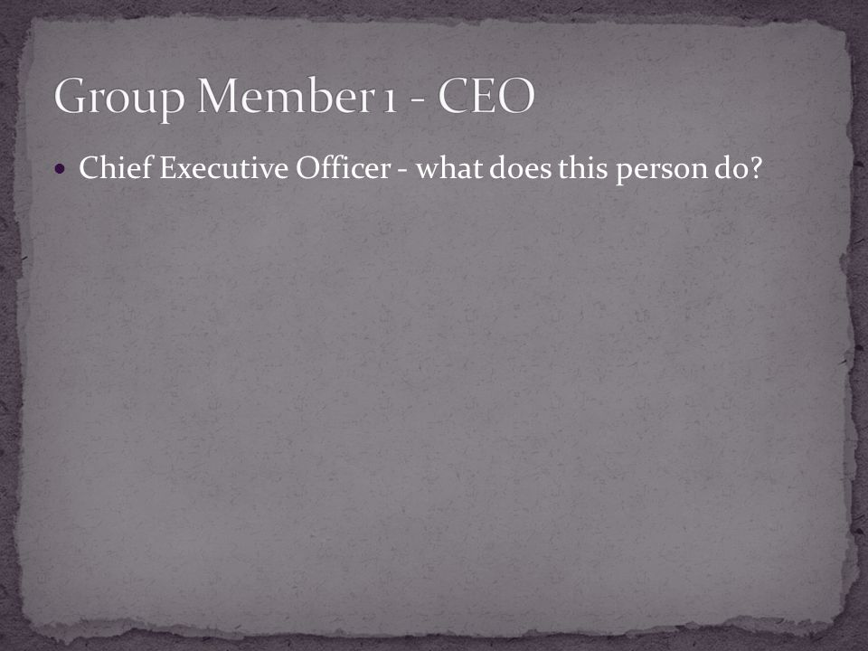 Chief Executive Officer - what does this person do