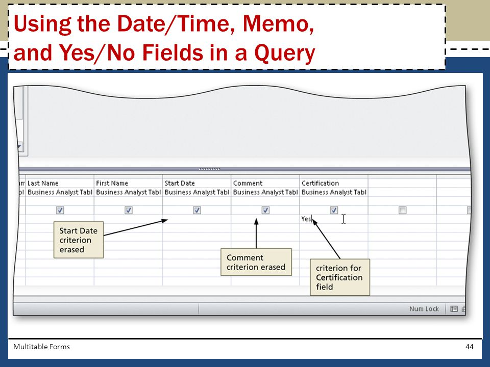 Multitable Forms44 Using the Date/Time, Memo, and Yes/No Fields in a Query