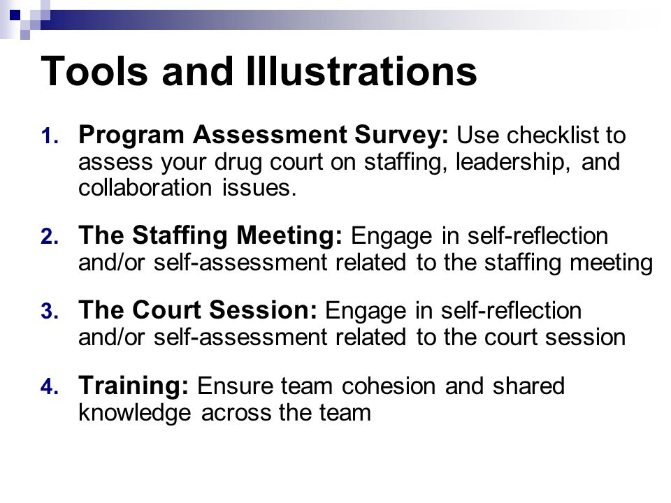 Tools and Illustrations 1. Program Assessment Survey: Use checklist to assess your drug court on staffing, leadership, and collaboration issues. 2. Th