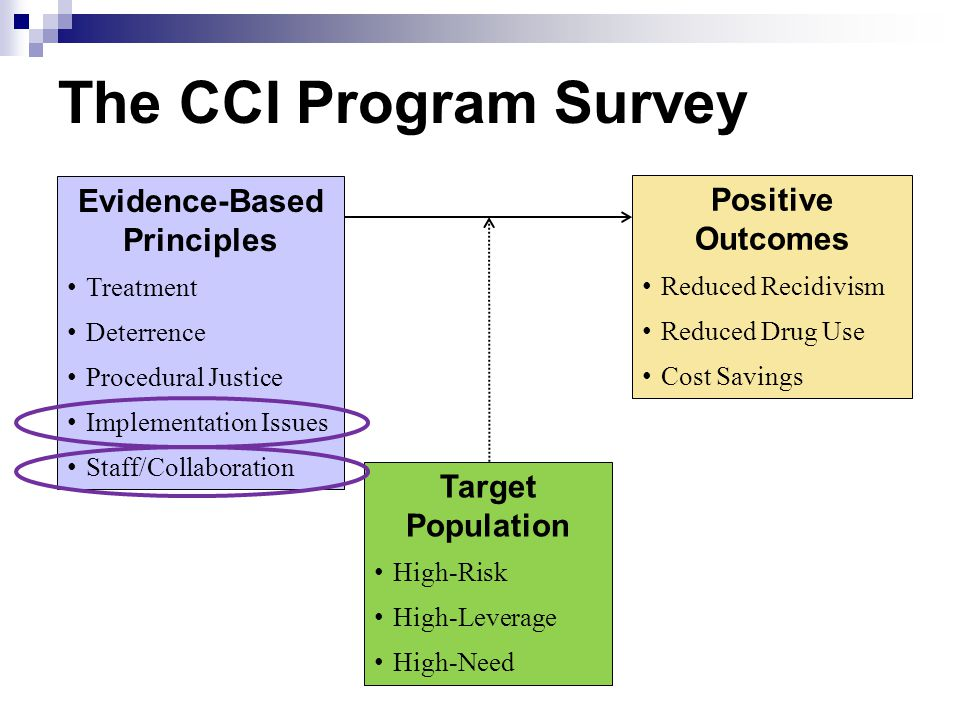 The CCI Program Survey Evidence-Based Principles Treatment Deterrence Procedural Justice Implementation Issues Staff/Collaboration Positive Outcomes R