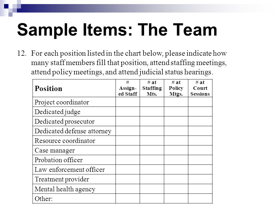 Sample Items: The Team Position # Assign- ed Staff # at Staffing Mts. # at Policy Mtgs. # at Court Sessions Project coordinator Dedicated judge Dedica