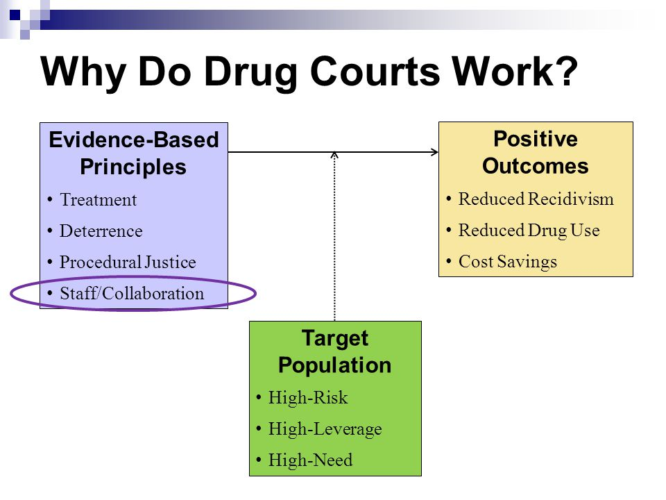 Why Do Drug Courts Work? Evidence-Based Principles Treatment Deterrence Procedural Justice Staff/Collaboration Positive Outcomes Reduced Recidivism Re