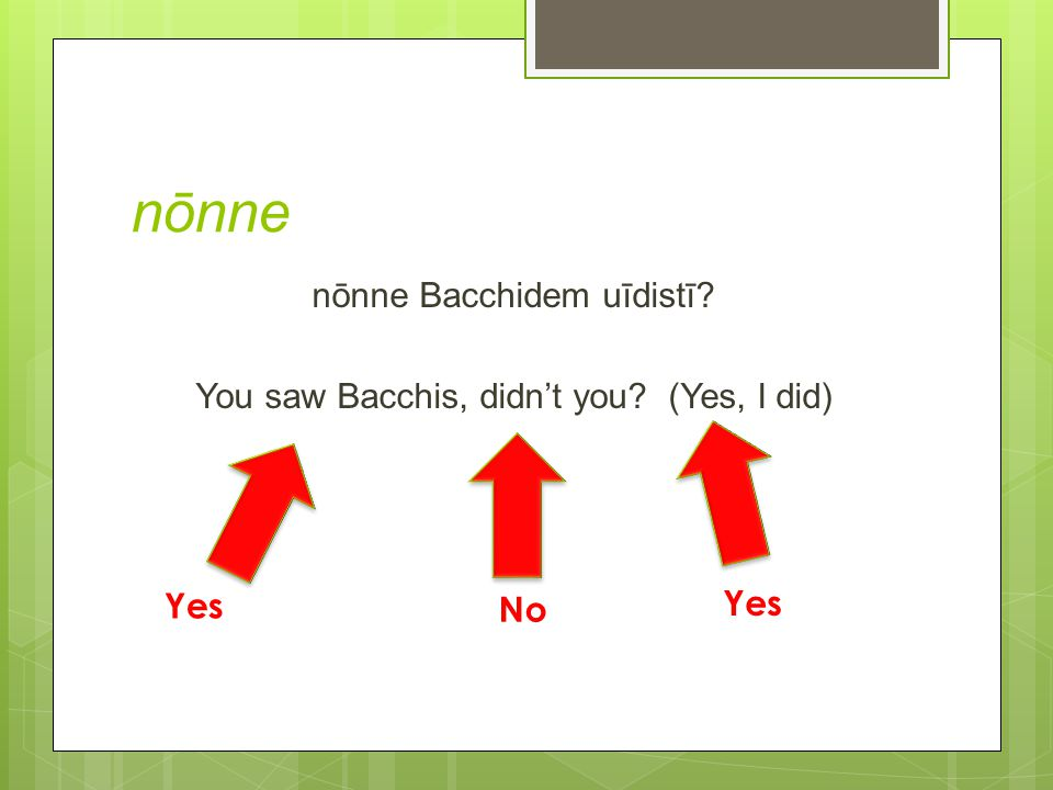 nōnne nōnne Bacchidem uīdistī You saw Bacchis, didn't you (Yes, I did) Yes No