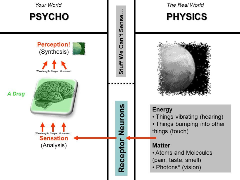 Stuff We Can't Sense… Perception.