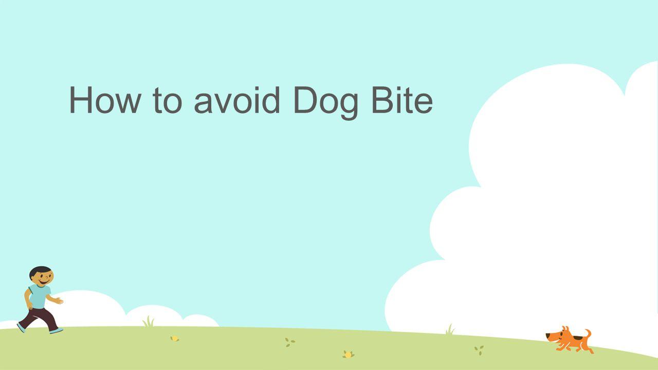 How to avoid Dog Bite