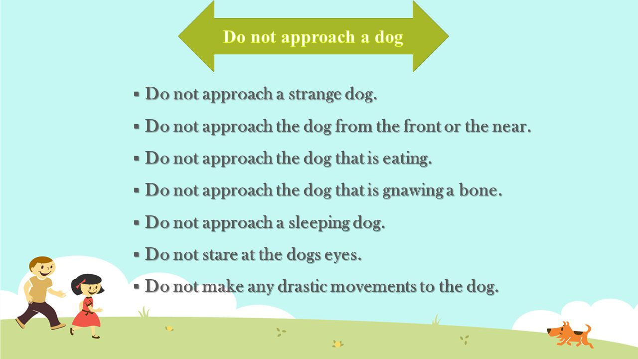  Do not approach a strange dog. Do not approach the dog from the front or the near.